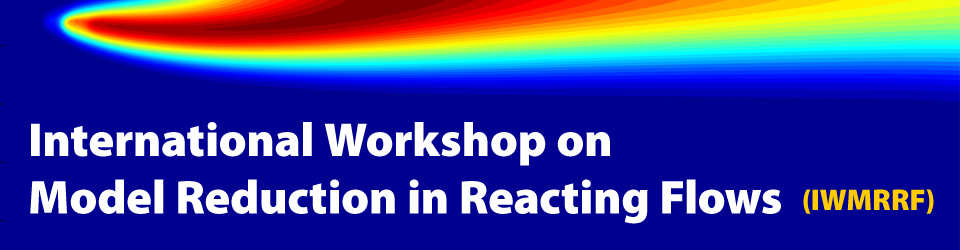 International Workshop on Model Reduction in Reacting Flows